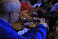 Geige2